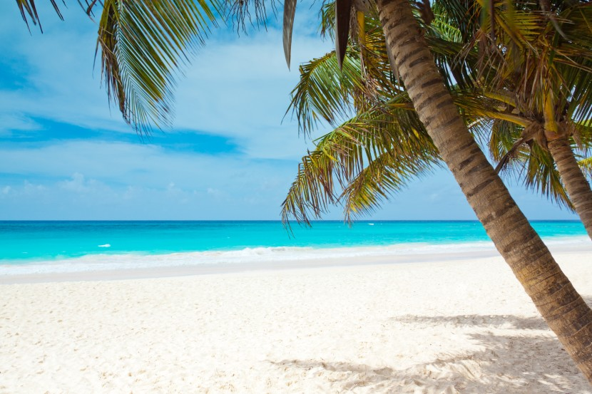 -absolutely_free_photos-original_photos-tropical-paradise-5306x3538_16759